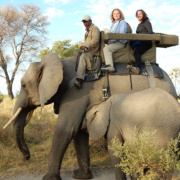 Author and daughter riding an elephant at Abu Camp