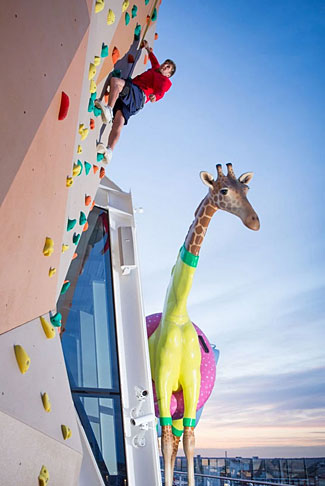 The rock-climbing wall with Gigi