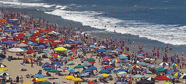 Ocean City Shoreline
